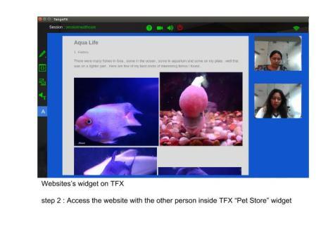 WebSite's widget on TFX chrome extension