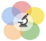 webrtc_development_logo
